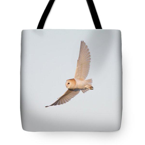Barn Owl Hunting Tote Bag