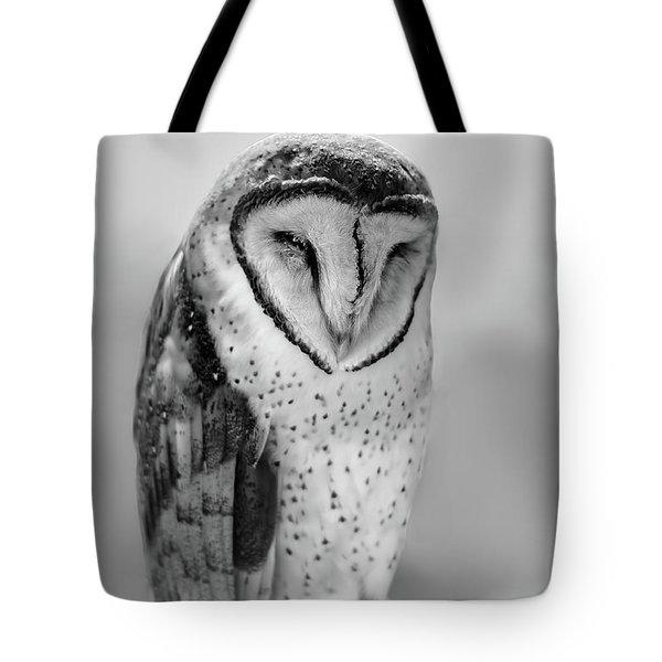 Barn Owl II Tote Bag