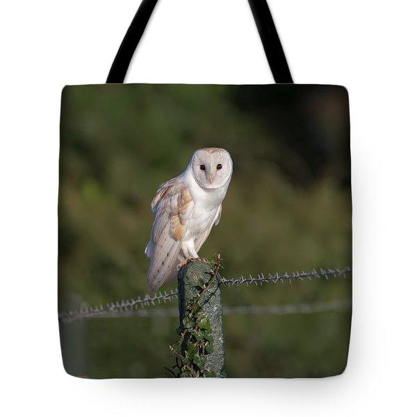 Barn Owl On Ivy Post Tote Bag