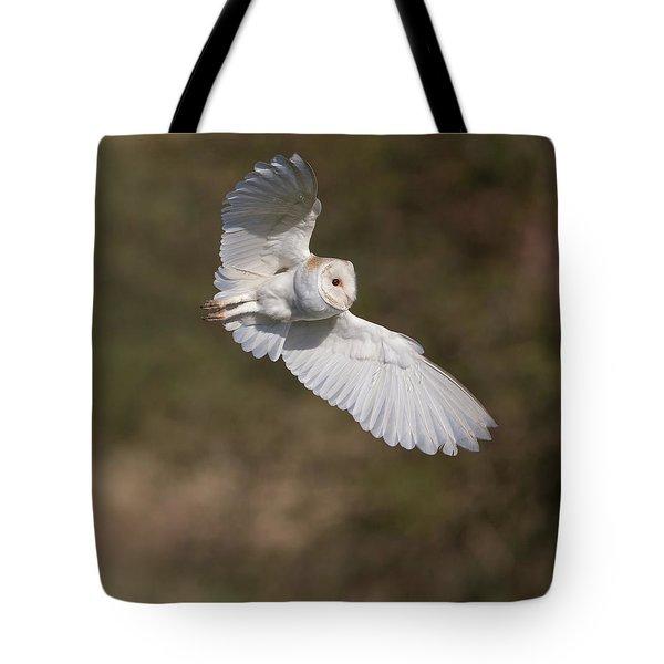 Barn Owl Wings Tote Bag