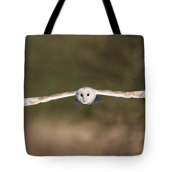 Barn Owl Wingspan Tote Bag