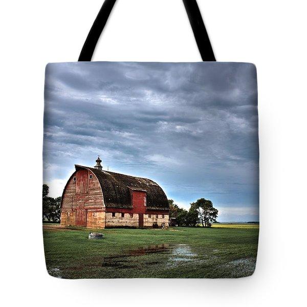 Barn Storming Tote Bag