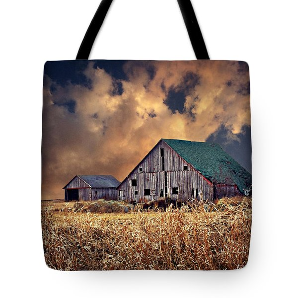 Barn Surrounded With Beauty Tote Bag by Kathy M Krause