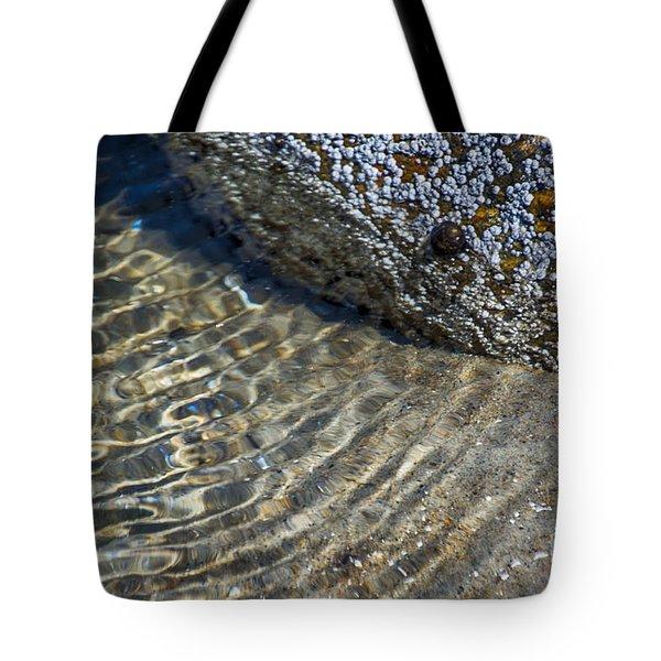 Barnacles And Reflection Tote Bag