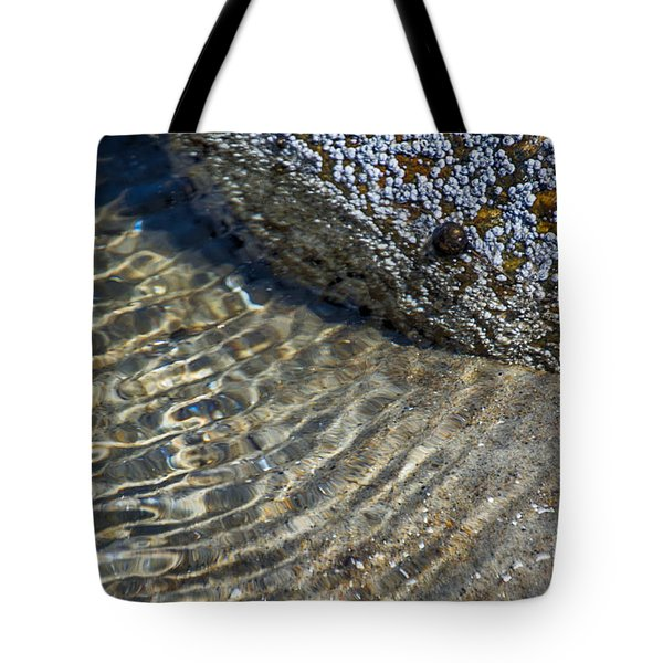Barnacles And Reflection Tote Bag
