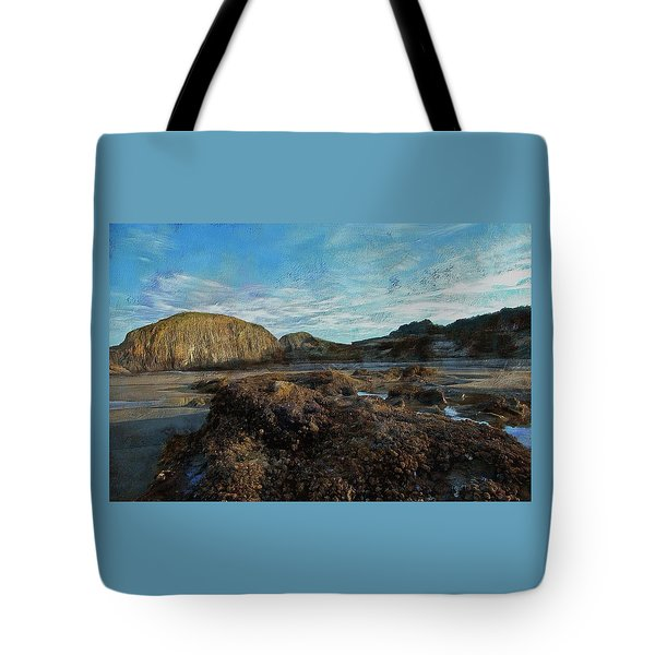 Tote Bag featuring the photograph Barnacles On The Beach by Thom Zehrfeld