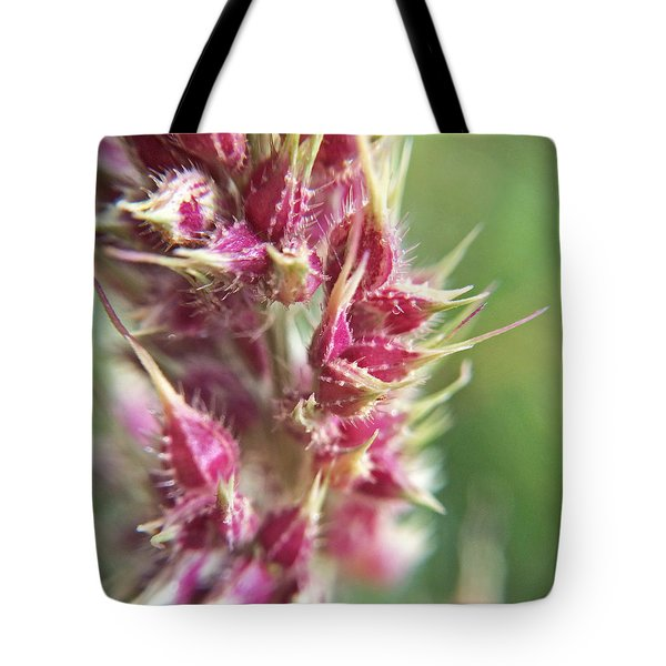 Tote Bag featuring the photograph Barnyard Grass Seed Head Macro by Robyn Stacey