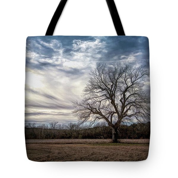 Baron Tree Of Winter Tote Bag