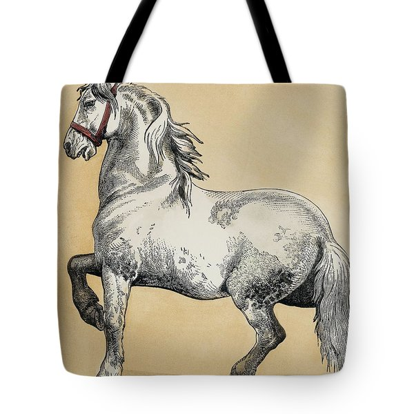 Baroque Art Tote Bag