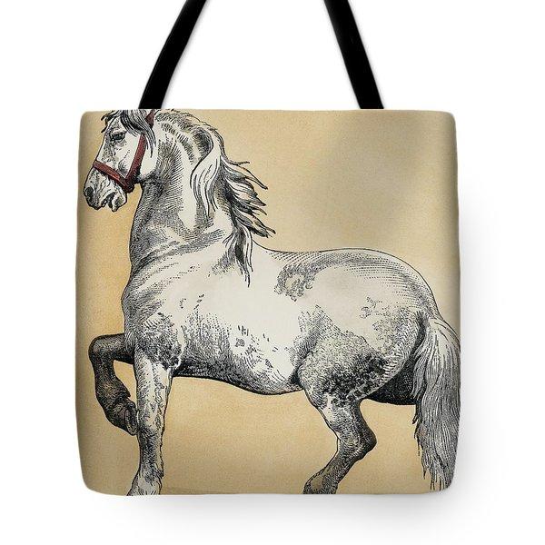 Baroque Art Tote Bag
