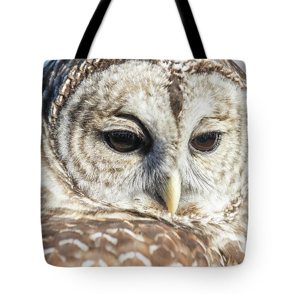 Barred Owl 1 Tote Bag