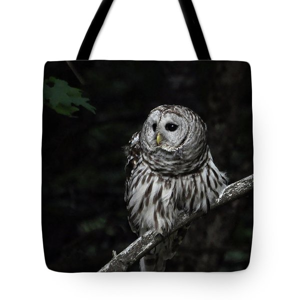 Barred Owl 2 Tote Bag by Glenn Gordon