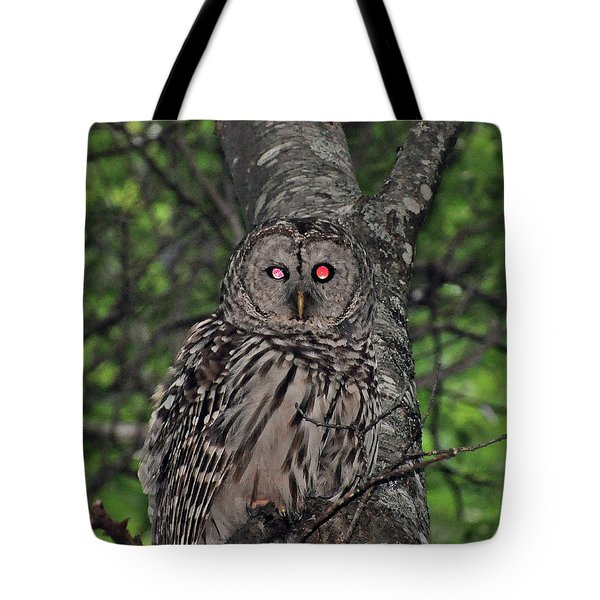 Barred Owl 3 Tote Bag by Glenn Gordon