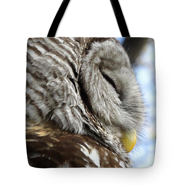 Barred Owl Beauty Tote Bag by Rebecca Overton