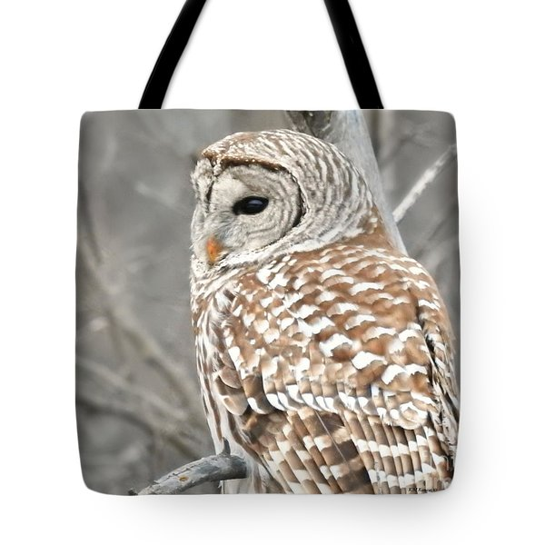 Barred Owl Close-up Tote Bag by Kathy M Krause