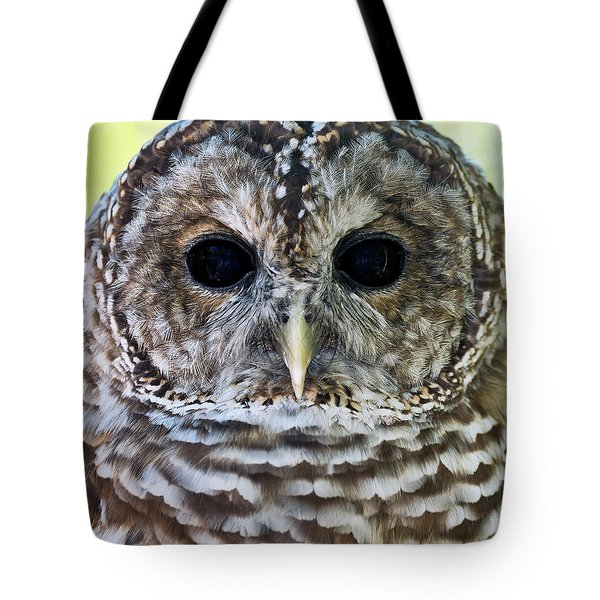Barred Owl Closeup Tote Bag