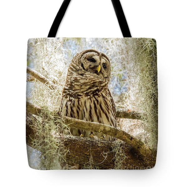 Tote Bag featuring the photograph Barred Owl by Michael D Miller