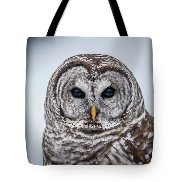 Tote Bag featuring the photograph Barred Owl by Paul Freidlund