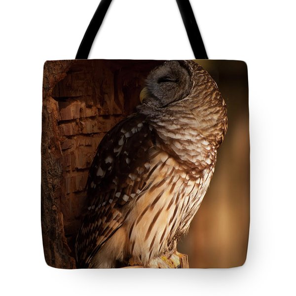 Tote Bag featuring the digital art Barred Owl Sleeping In A Tree by Chris Flees