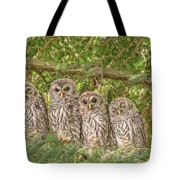 Barred Owlets Nursery Tote Bag