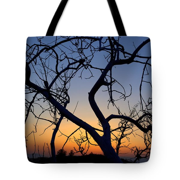 Tote Bag featuring the photograph Barren Tree At Sunset by Lori Seaman