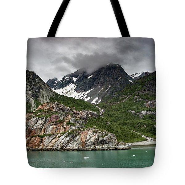 Barren Wilderness Tote Bag