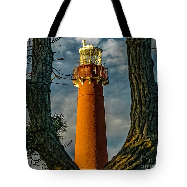 Tote Bag featuring the photograph Barrny Thru The Trees by Nick Zelinsky