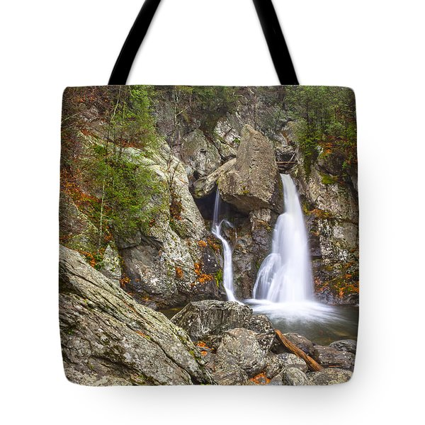 Bash Bish Falls In November 2 Tote Bag by Angelo Marcialis