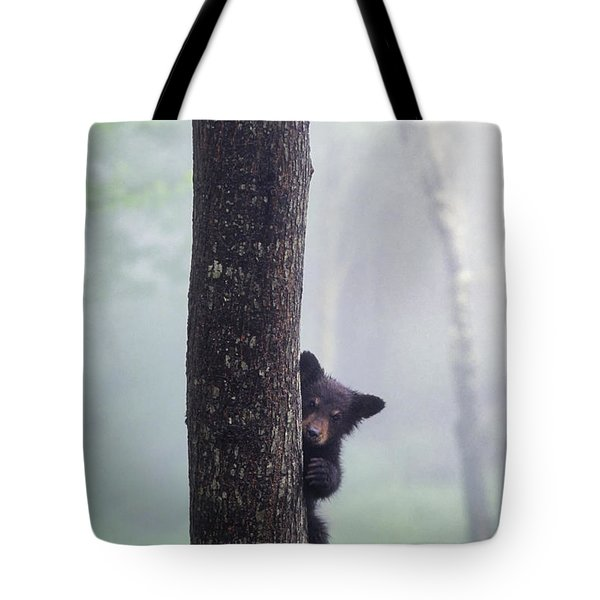 Bashful Bear Cub - Fs000230 Tote Bag