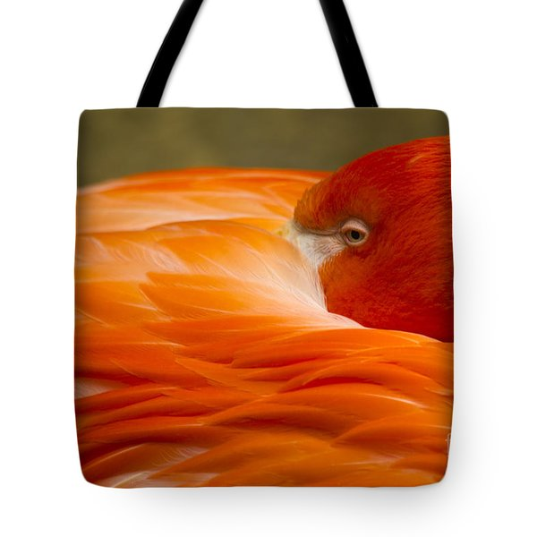 Bashful Flamingo Tote Bag