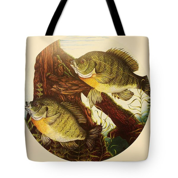 Basking Bluegills Tote Bag