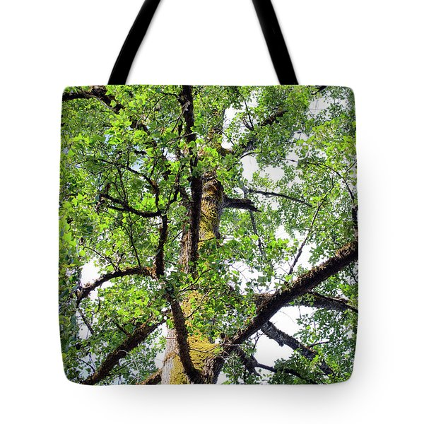 Tote Bag featuring the photograph Basking In The Light Of The Lord by Tikvah's Hope