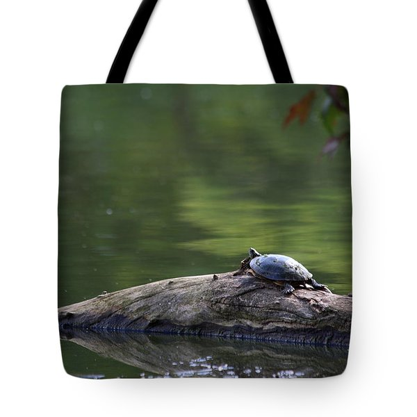 Basking Turtle Tote Bag