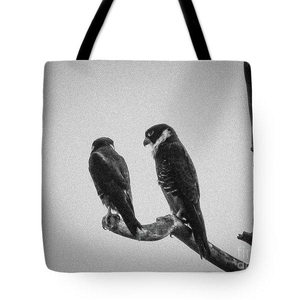 Bat Falcon In Black And White Tote Bag