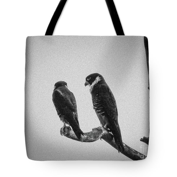 Bat Falcon In Black And White Tote Bag