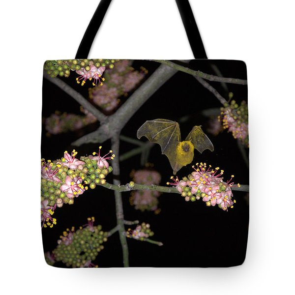 Tote Bag featuring the photograph Bat by Jim Walls PhotoArtist