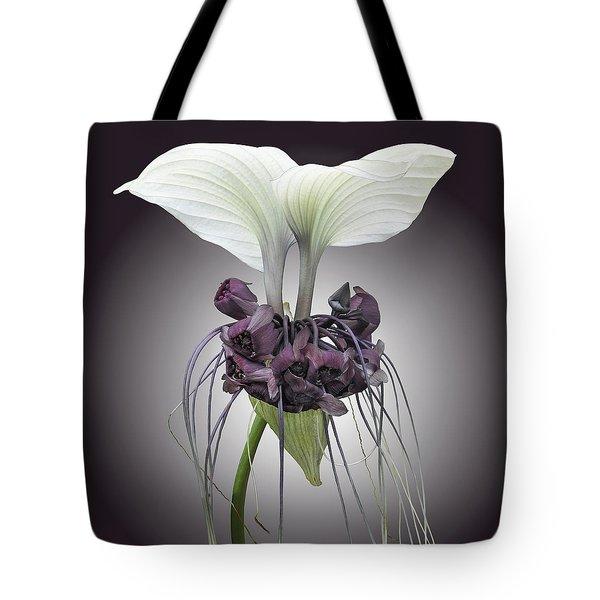 Bat Plant Tote Bag by Denise Bird