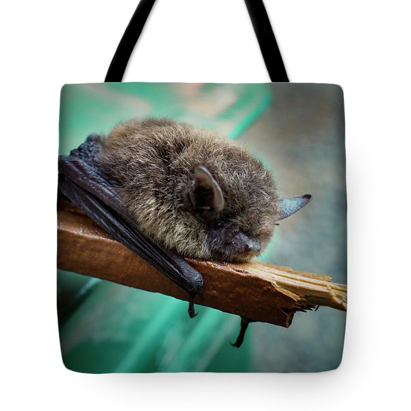 Tote Bag featuring the photograph Bat Rehoused by Jean Noren