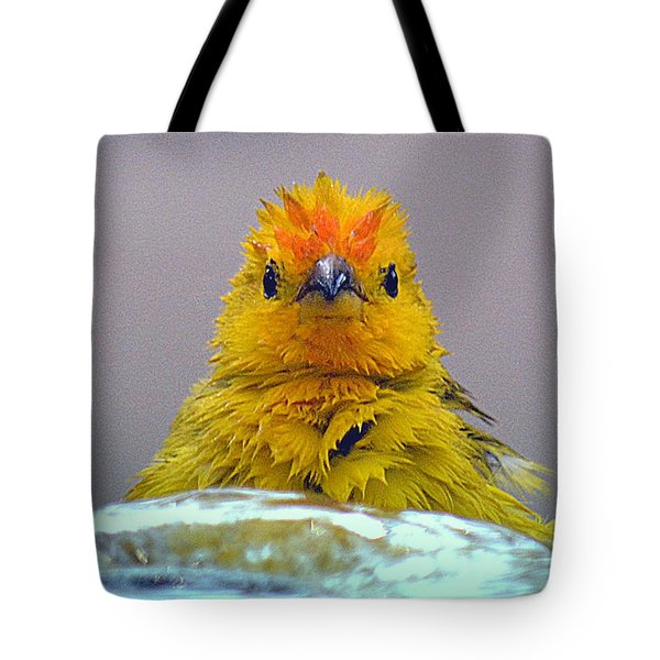 Tote Bag featuring the photograph Bath Time Finch by Lori Seaman