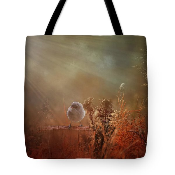 Tote Bag featuring the photograph Bathed In Light by Elaine Teague