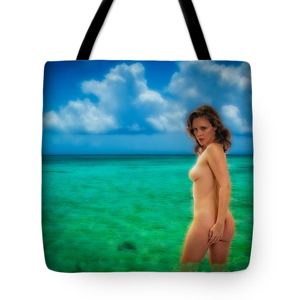 Tote Bag featuring the photograph Bathing Nude by Harry Spitz