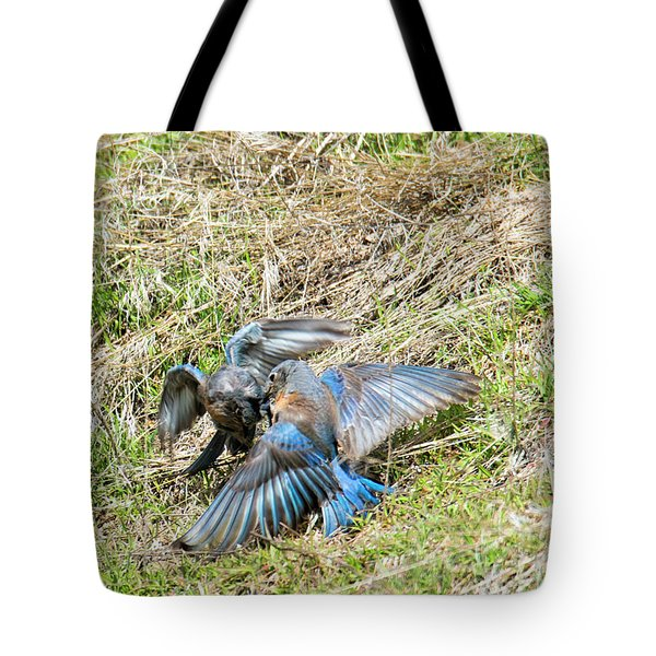 Battle For His Attention Tote Bag by Mike Dawson