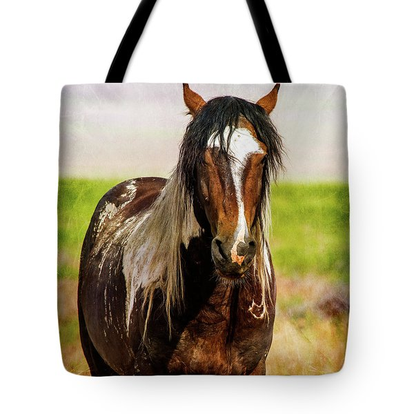 Tote Bag featuring the photograph Battle Worn Stallion by Mary Hone