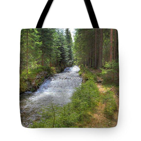 Bavarian Forest Stream Tote Bag