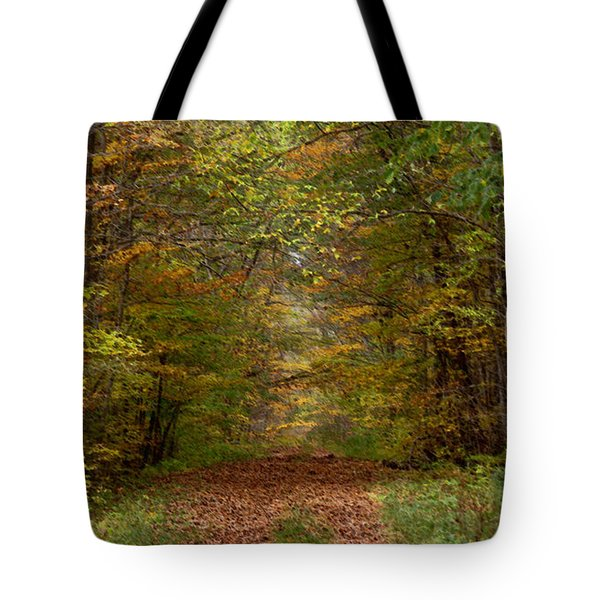 Tote Bag featuring the photograph Baxter's Hollow  by Kimberly Mackowski