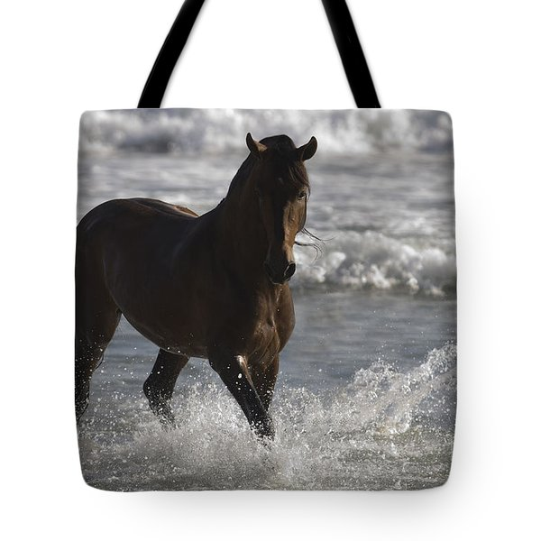 Bay Andalusian Stallion In The Surf Tote Bag by Carol Walker