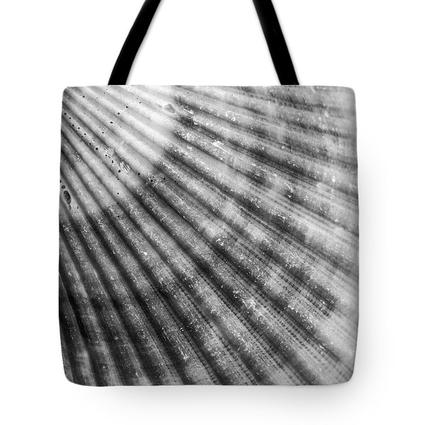 Bay Scallop Macro Tote Bag