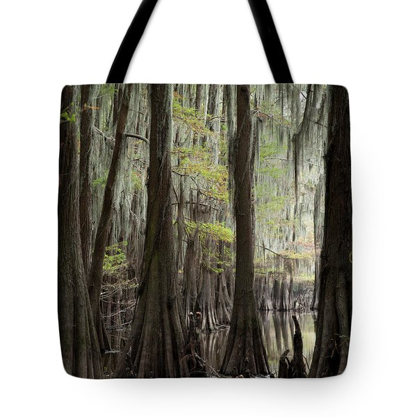 Bayou Trees Tote Bag