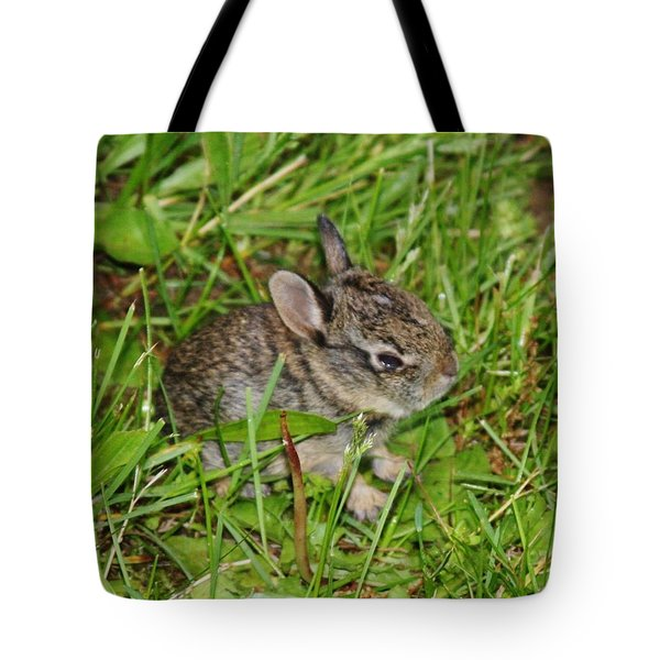Tote Bag featuring the photograph Be Brave. Take A Chance. by Vadim Levin