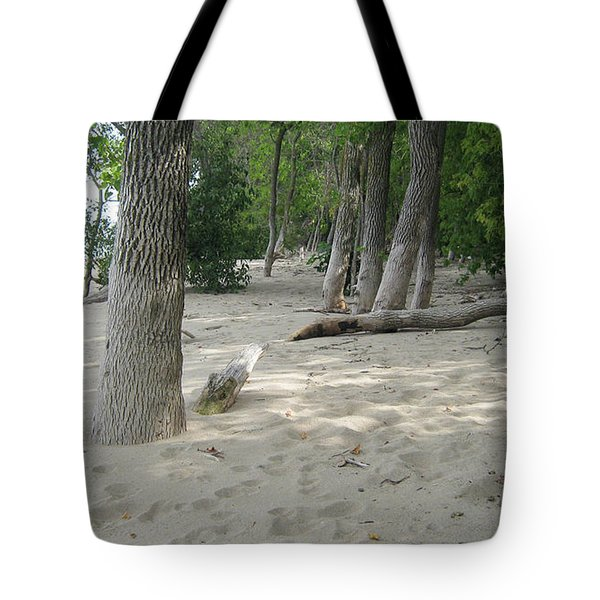 Beach At The Lake Tote Bag